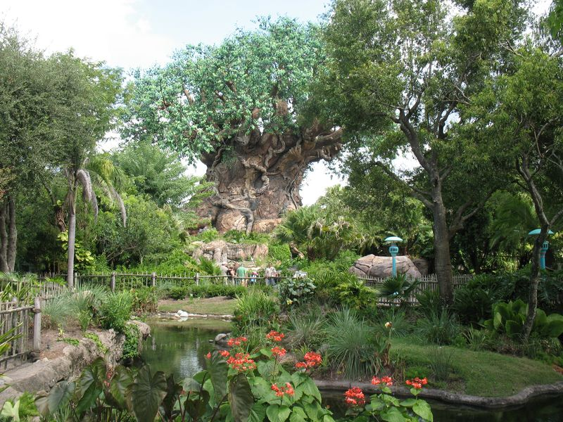 Disney's Animal Kingdom Park Orlando Tree of Life
